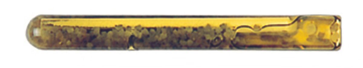 AMPOULE COLLINOX